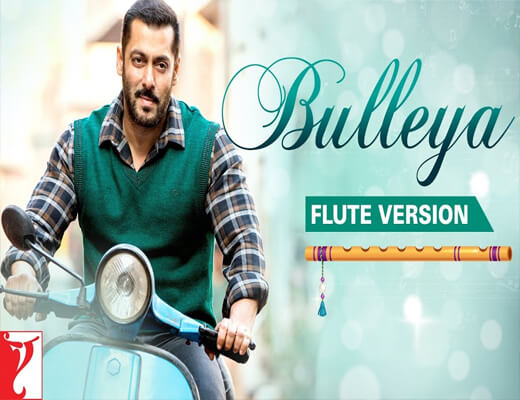 Bulleya---Sultan---Lyrics-In-Hindi