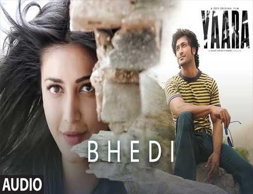 Bhedi---Yaara---Lyrics-In-Hindi