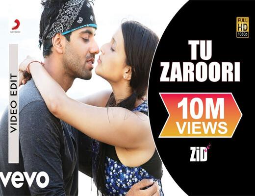 Tu-Zaroori---ZID---Lyrics-In-Hindi