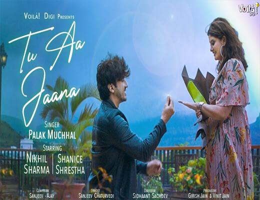 Tu-Aa-Jaana---Palak-Muchhal---Lyrics-In-Hindi