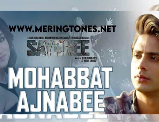 Mohabbat Ajnabee Lyrics – Sayonee