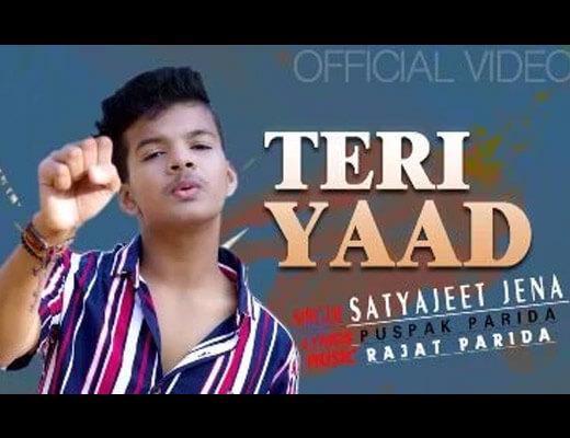 Teri Yaad Lyrics – Satyajeet Jena