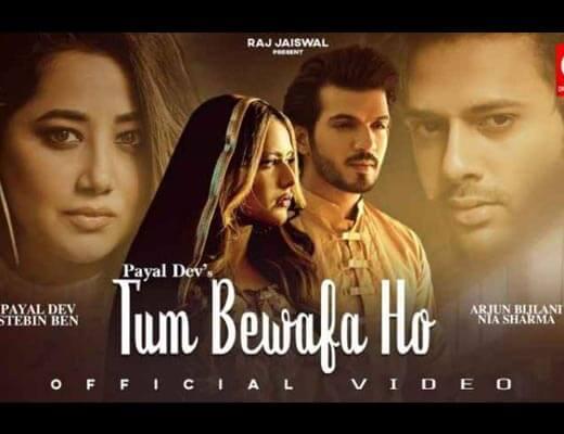 Tum Bewafa Ho Lyrics – Stebin Ben, Payal Dev