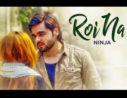 Royi Na Song Lyrics – Ninja