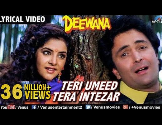 Teri Umeed Tera Intezar Lyrics - Deewana